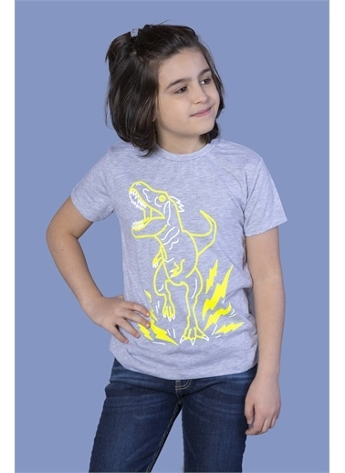 Toontoy Kids Toontoy Erkek Çocuk Reflektörlü Dinazor Baskılı Tişört Renkli